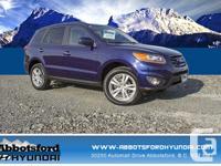 Make Hyundai Model Santa Fe Colour Blue Trans