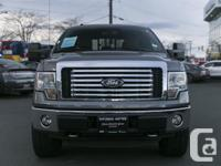 Make Ford Model F-150 SuperCrew Year 2011 Colour GRAY
