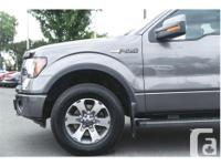 Make Ford Model F-150 Year 2012 Colour Grey kms 73736