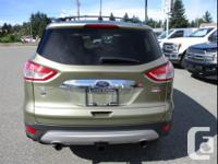 Make Ford Model Escape Year 2013 Colour Ginger Ale