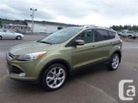 Make Ford Model Escape Year 2013 Colour Green kms