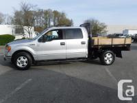 Make Ford Model F-150 Year 2013 Colour Gray kms 131510