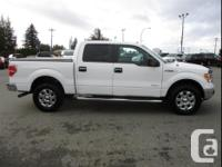 Make Ford Model F-150 Year 2013 Colour Grey kms 154910