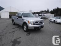 Make Ford Model F-150 Year 2013 Colour Silver kms