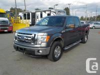 Make Ford Model F-150 Year 2013 Colour Gray kms 162755