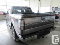 Make Ford Model F-150 Year 2013 Colour Grey kms 151253