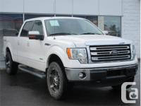 Make Ford Model F-150 Year 2013 Colour White Platinum