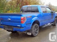 Make Ford Model F-150 Year 2013 Colour Blue kms 28725