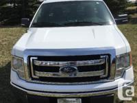 Make Ford Model F-150 Year 2013 Colour White kms 45000