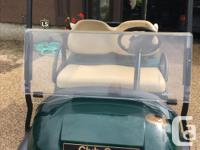 Electric, windshield, under canopy baskets, charger