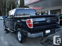 Make Ford Model F-150 Year 2014 Colour Black kms 67703