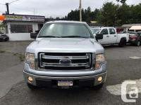 Make Ford Model F-150 Year 2014 Colour Silver kms