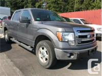 Make Ford Model F-150 Year 2014 Colour Grey kms 32029