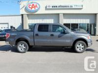 Make Ford Model F-150 Year 2014 Colour Grey kms 33504