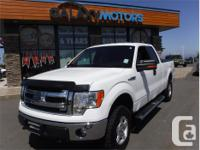 Make Ford Model F-150 Year 2014 Colour White kms 63236