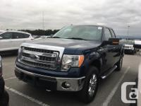 Make Ford Model F-150 Year 2014 Colour Blue kms 77000