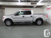 Make Ford Model F-150 Year 2014 Colour Ingot Silver