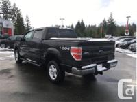 Make Ford Model F-150 Year 2014 Colour Black kms 75581
