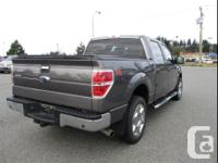 Make Ford Model F-150 Year 2014 Colour Sterling Grey