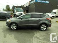 Make Ford Model Escape Year 2015 Colour Gray kms 51290