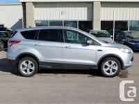 Make Ford Model Escape Year 2015 Colour Silver kms