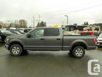 Make Ford Model F-150 Year 2016 Colour Gray kms 46663