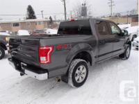 Make Ford Model F-150 Year 2016 Colour Grey kms 28493