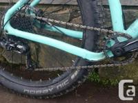 Amazing bike. Norco Torrent 7.1, size large. Plus sized