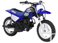 PW50One of the industry's best-selling mini-bikes, the