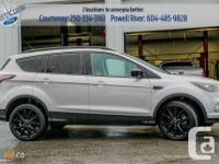 Make Ford Model Escape Year 2017 Colour Silver kms