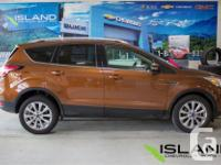 Make Ford Model Escape Year 2017 Colour Bronze kms