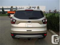 Make Ford Model Escape Year 2017 Colour Gold kms 27162