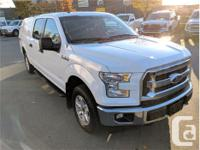 Make Ford Model F-150 Year 2017 Colour White kms 24229