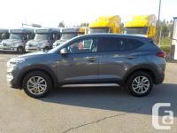 Make Hyundai Model Tucson Year 2017 Colour Grey kms