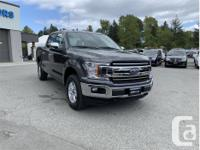 Make Ford Model F-150 Year 2018 Colour Grey kms 18152
