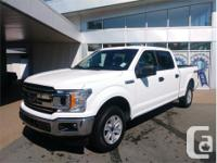 Make Ford Model F-150 Year 2018 Colour White kms 19677