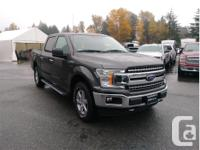 Make Ford Model F-150 Year 2018 Colour Grey kms 5783