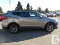 Make Hyundai Model Santa Fe Year 2018 Colour Brown kms