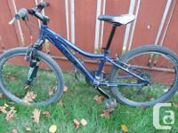 Blue mountain bike, 2013 Purchased new at Performance