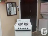 "One Danby (Pilot lite)  24"" Gas Stove for sale, very"