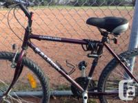 "24"" Raleigh AMBUSH  Excellent quality - you feel the"