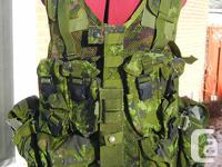 This is an original Canadian Armed Forces Digital