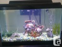 30 gallon full set-up fish tank includes cover, light,