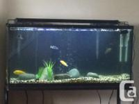Selling our 33 gallon tank that comes with everything