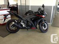 R3 .Yamaha has raised the bar in the entry sports class