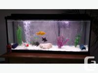 For sale a 55 gallon goldfish tank that is also