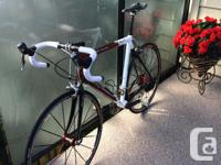 Carbon/Scandium Rocky Mountain Solo with Dura Ace 10