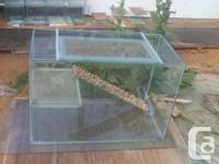 """67 Gallon Terrarium 36"""" long by 18"""" wide and 24"""" high"""