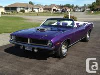 1970 Plymouth Cuda Convertible TributeThis outstanding