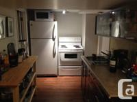 Beautiful basement suite in south osborne, in
